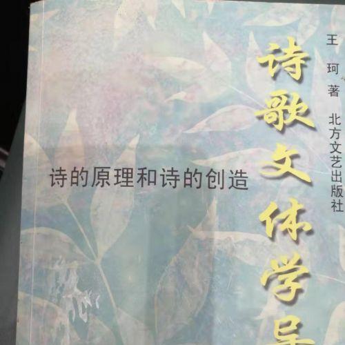 十三行汉诗 读王珂《诗歌文体学导论一一诗的原理和诗的创造》
